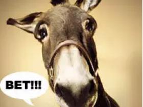 【GG扑克】小鱼、大鱼和鲨鱼:浅谈应对各版本驴子的不同策略