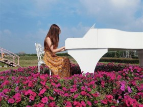 【GG扑克】小清新正妹Estelle 新社花海花海中弹钢琴仙气逼人