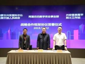 【GG扑克】阿里与袁隆平团队达成协议:10年在盐碱地种水稻1亿亩